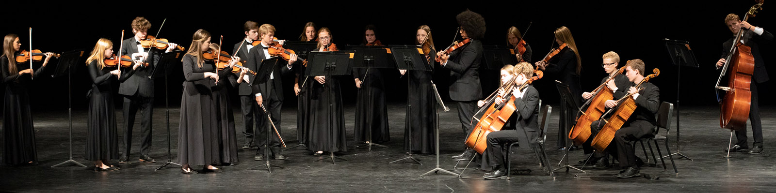 Chamber Orchestra