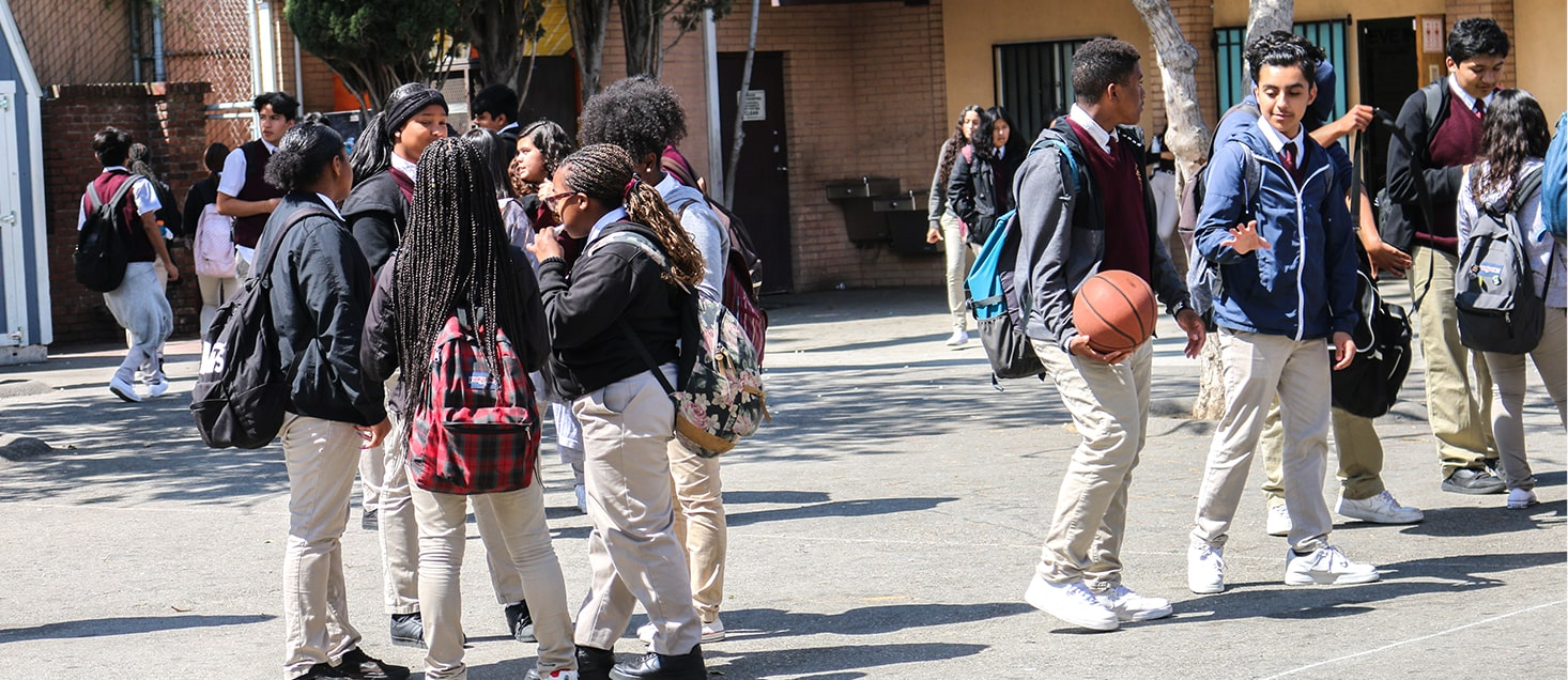 students socializing on school grounds