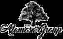 The Alamosa Group