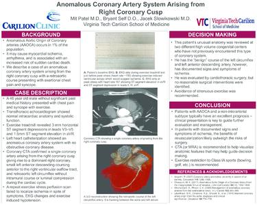 PDF Coronary Vessels Poster