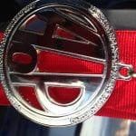 AoP Medallion