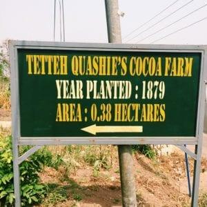 Ghana's first cocoa farm