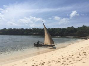 Bongoyo boat