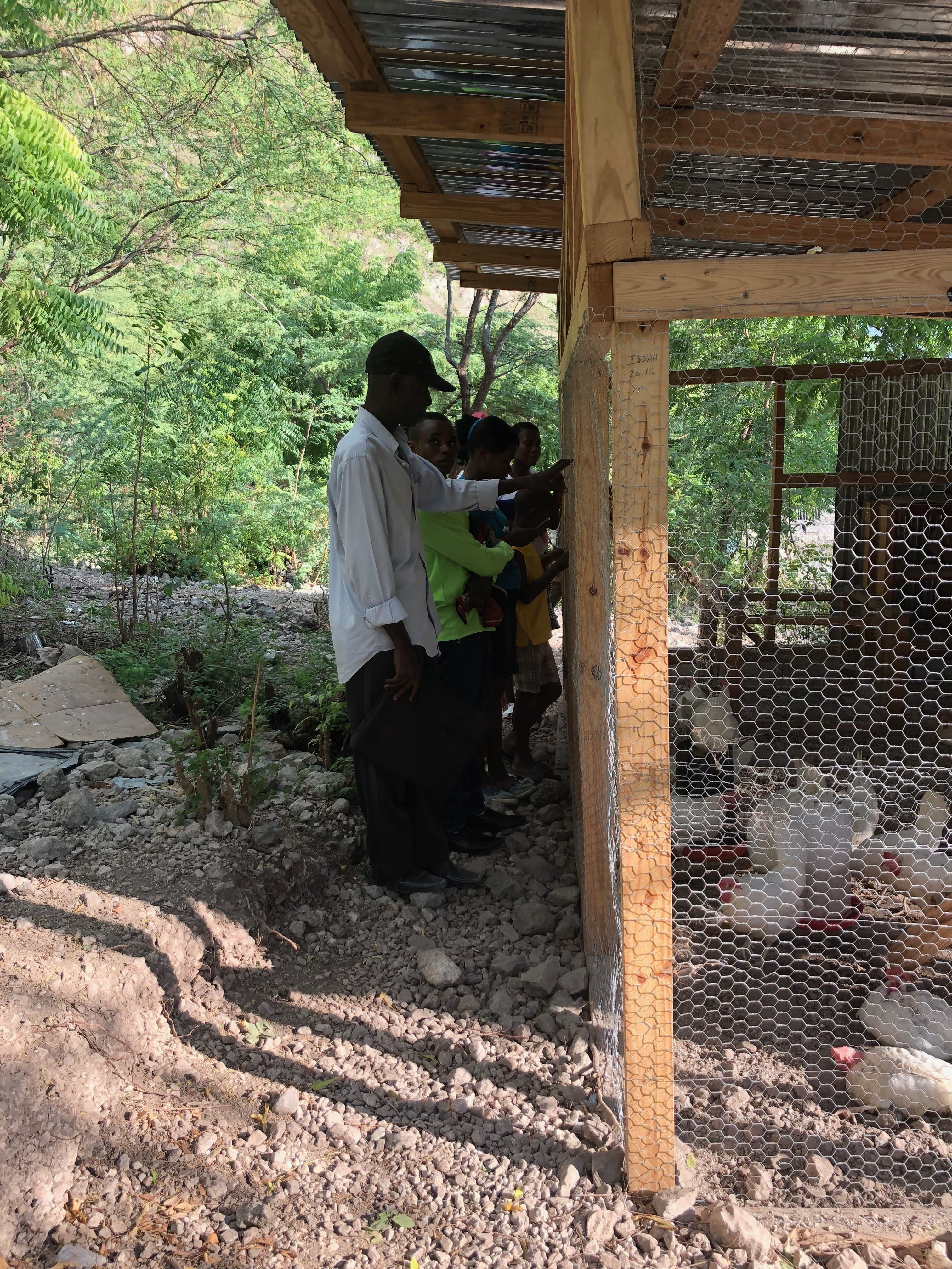 Our little trip to the chicken coop to see an example of job creation