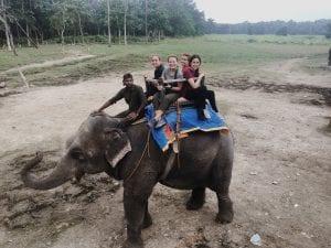 Elephant ride !