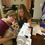 Even dogs know how important sewing is!