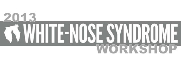 2013 White-Nose Syndrome Workshop