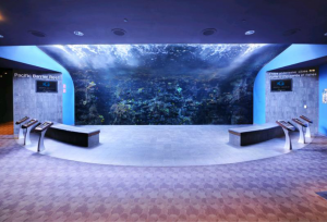 One of the many areas available for receptions. This specific one is located in the Tropical Dive Exhibit.