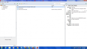 This is the screenshot of my first Zotero entries.