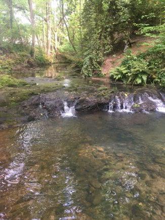 Peavine Creek, taken by me