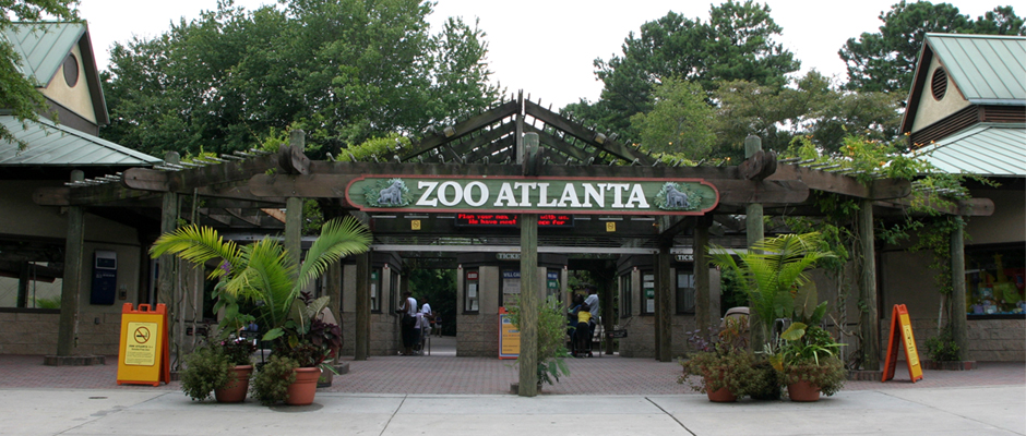Zoo Atlanta was founded in , when businessman George V. Gress purchased a bankrupt traveling circus and donated the animals to the city of Atlanta. City leaders opted to house the collection in Grant Park, which remains the zoo's present location.