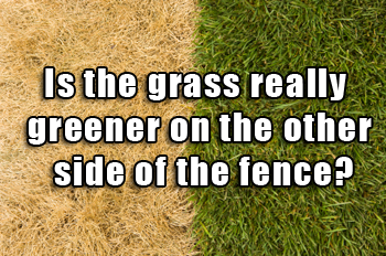 """Meme saying """"Is the grass really greener on the other side of the fence?"""" with a picture of green grass on the right and dry grass on the left."""