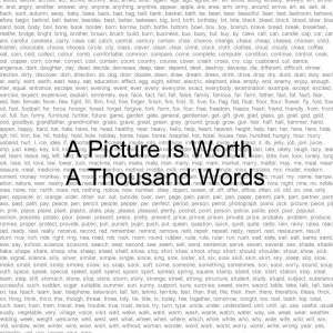 """The saying """"A picture is worth a million words"""" is beginning to be proven in the modern day style of writing (bloging etc). Sourced from Transformation Marketing"""