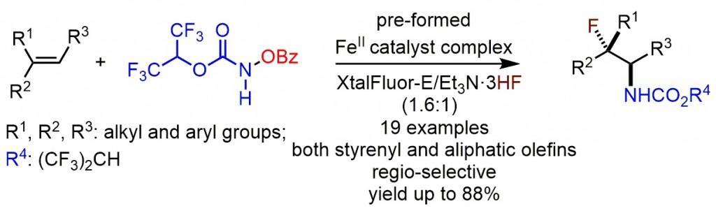 TOC aminofluorination jpeg