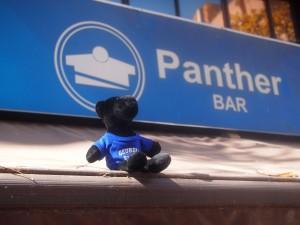 Pocho at Panther Bar - Cordoba