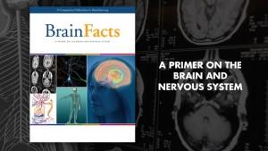 brainfactsbook_spotlight