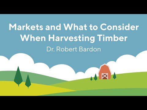 Screencap taken from Markets and What to Consider When Harvesting Timber