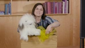 Screencap taken from Preschool Storytime Online Episode 4