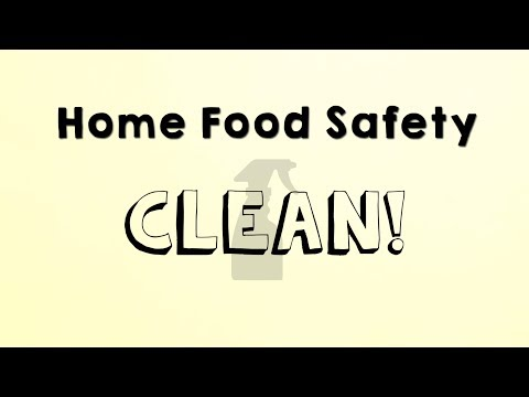 Screencap taken from Home Food Safety - Clean!