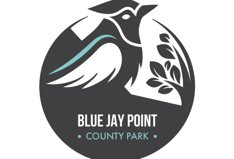 Blue Jay Point Icon