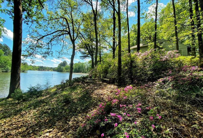 Tree-lined shore of lake at Kellam-Wyatt Farm
