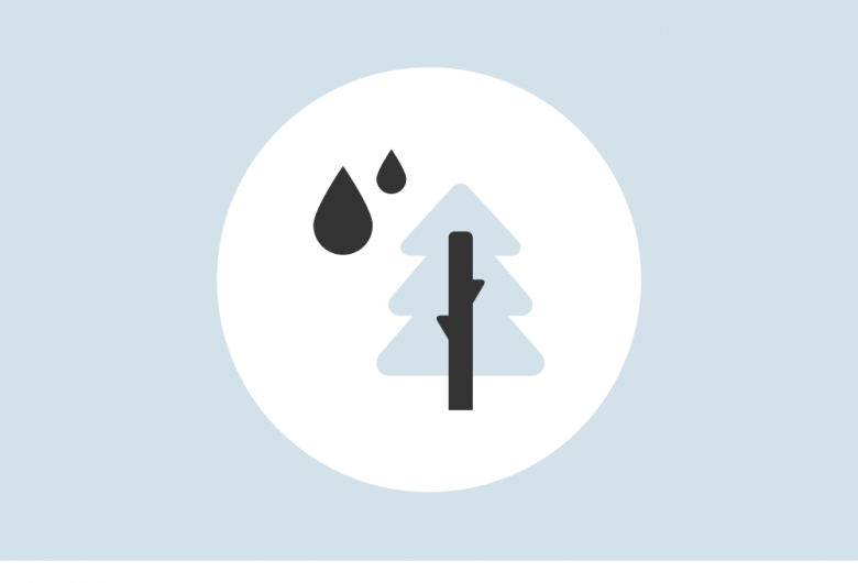 Graphic of water droplets falling next to pine tree