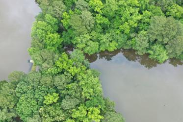 Aerial photo of Kellam-Wyatt Farm property