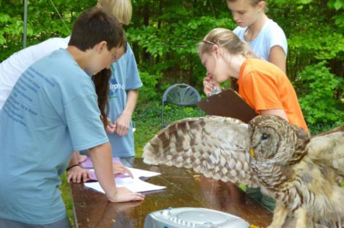 Students observing wildlife taxidermy mount