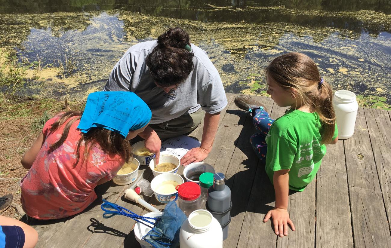 A photo of kids and park staff on a wooden dock investigating critters found during a pond study program