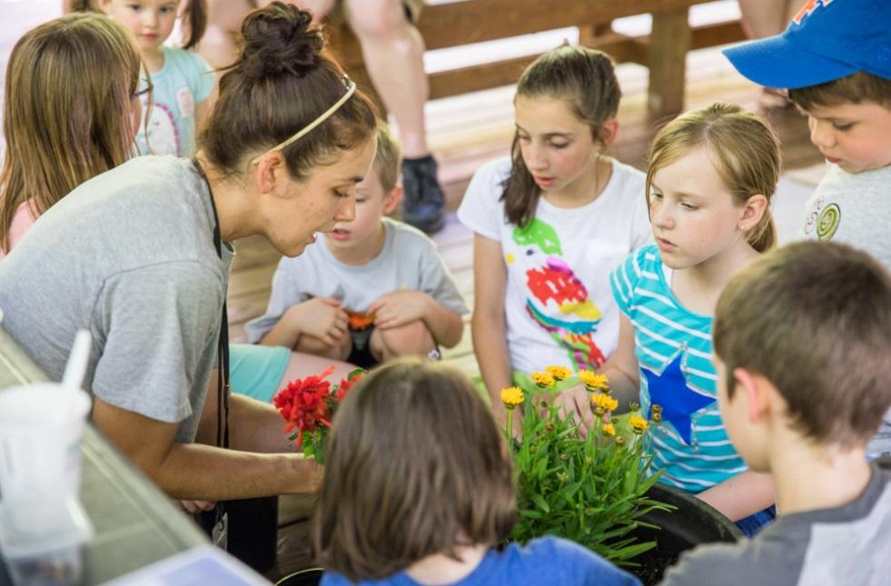programmer works with group of camp kids to plant flower