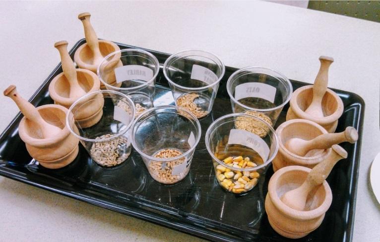 tray of mortar and pestles and grain