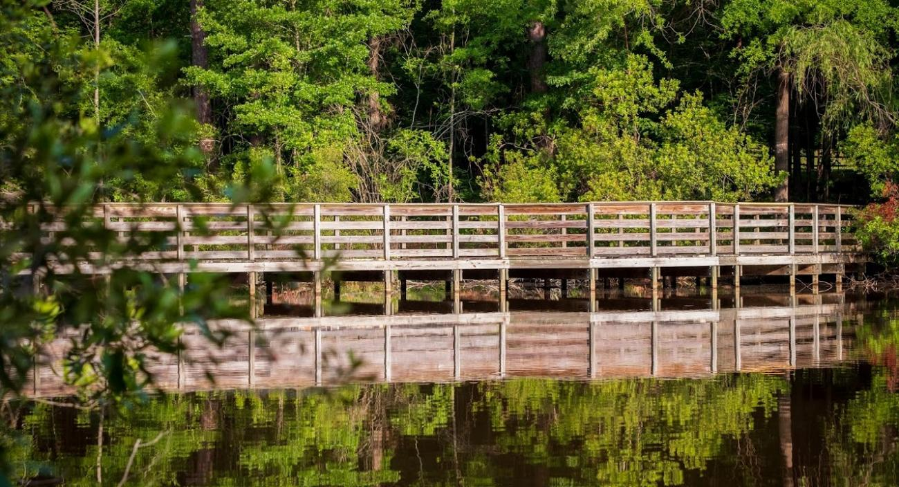 view of pond boardwalk from across pond with reflection in water and trees in background
