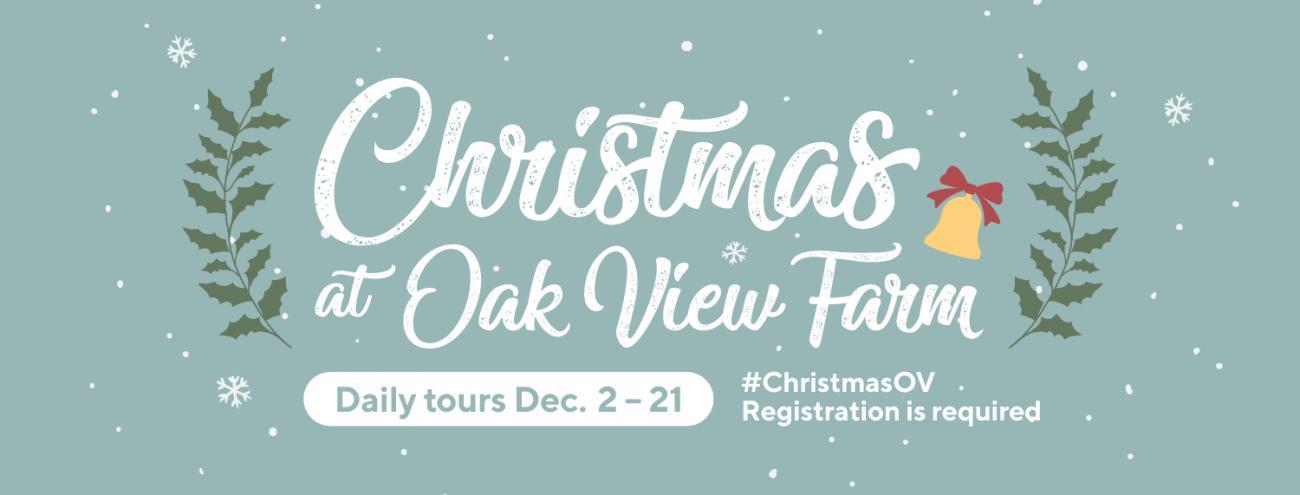 Graphic design advertising Christmas at Oak View Farm programs