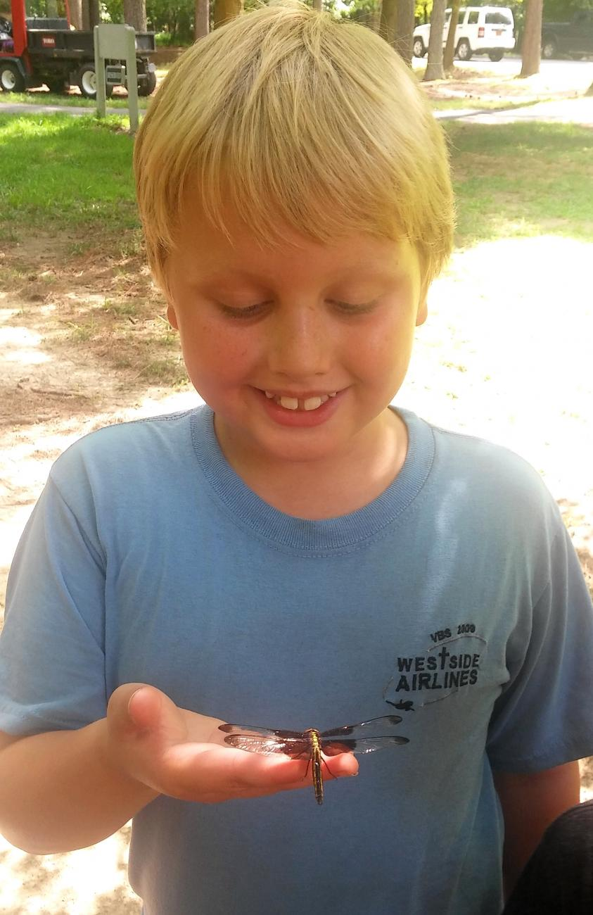 Photo of a boy at day camp holding a dragonfly