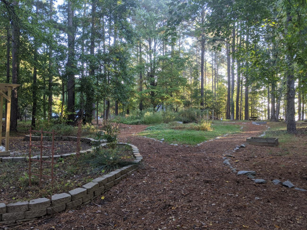 Photo of the Educational Garden showing mulched paths and raised beds