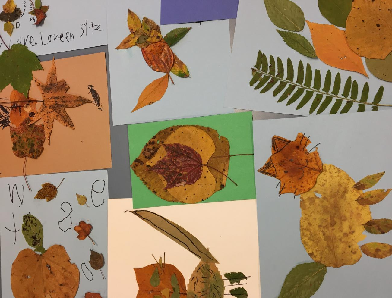 Animal pictures made out of colorful fall leaves