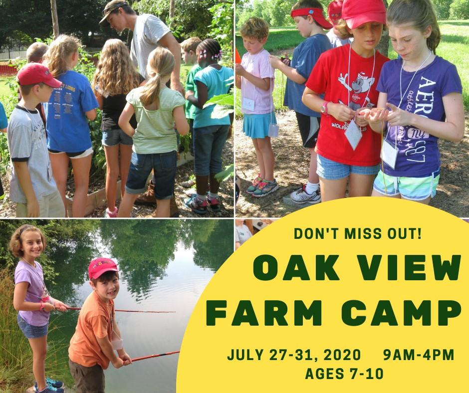 Collage of kids at Oak View's yearly Farm Camp