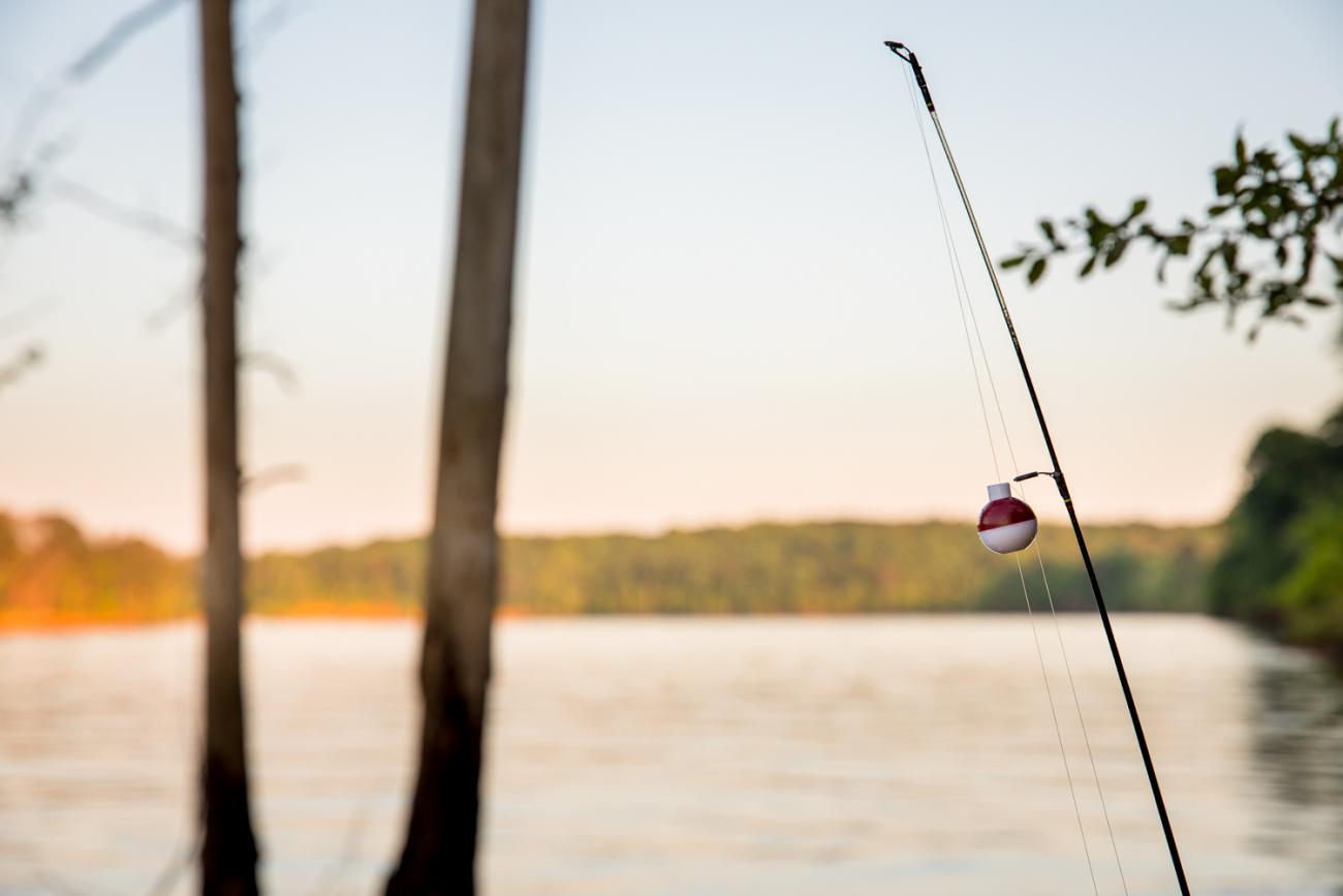 Fishing pole with red and white bobber silhouetted against the lake