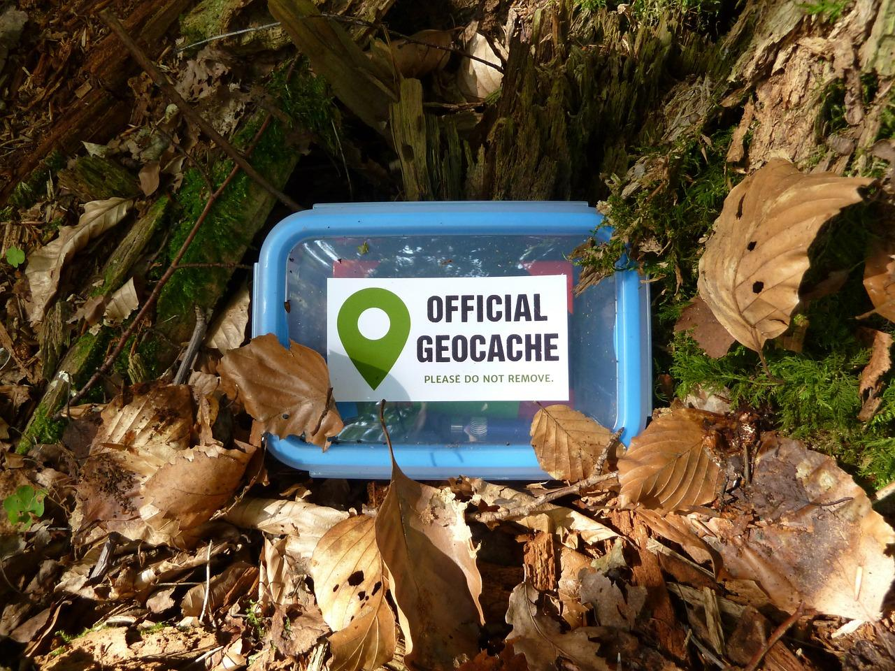 Image of a labeled geocache plastic container on the forest floor