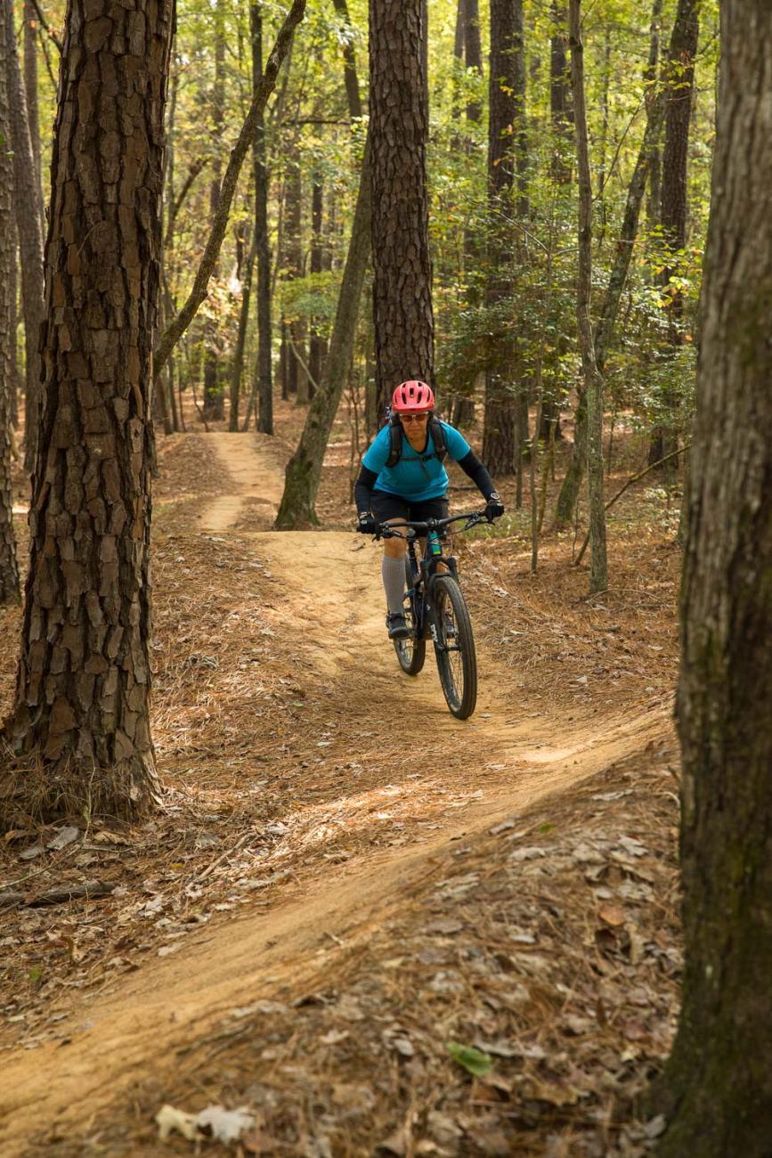 Photo of a visitor on a mountain bike riding on the Hog Run mountain bike trail