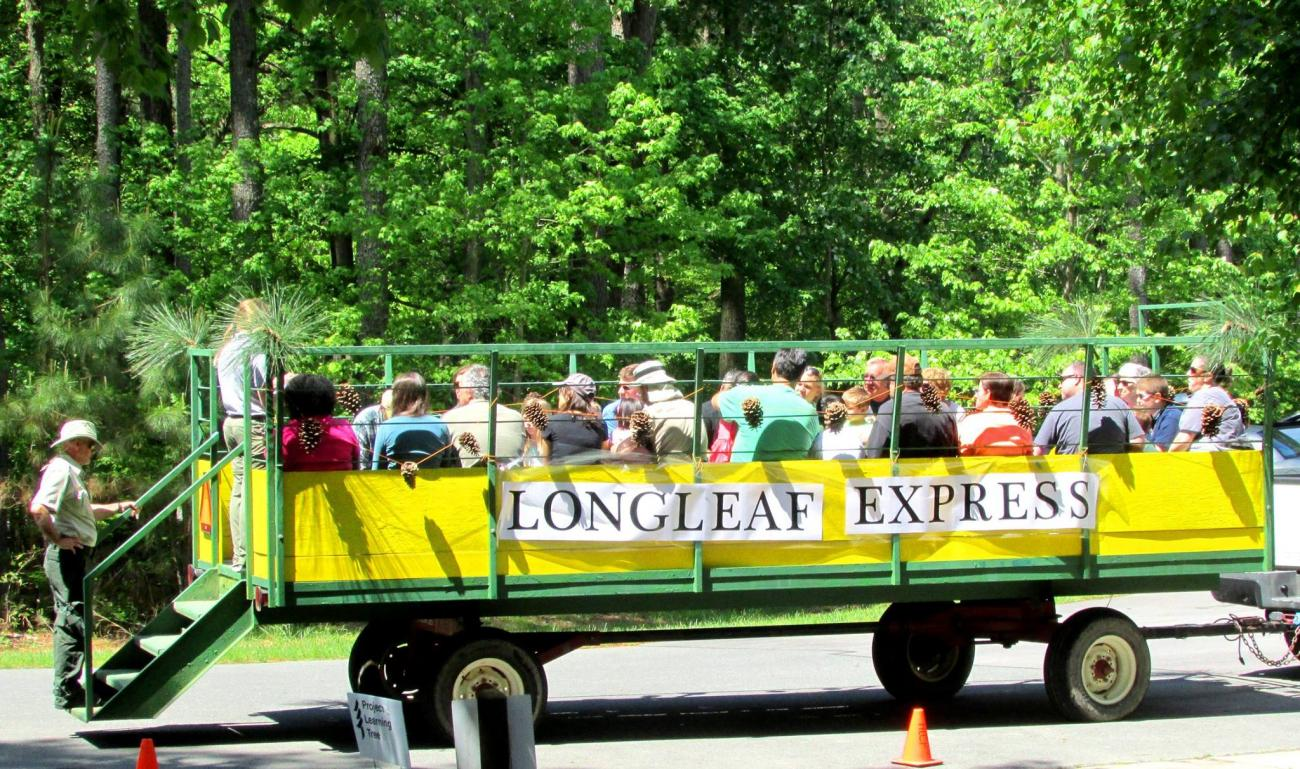 """Photo of the large green and yellow """"Longleaf Express"""" wagon which takes event goers to the Longleaf forest"""