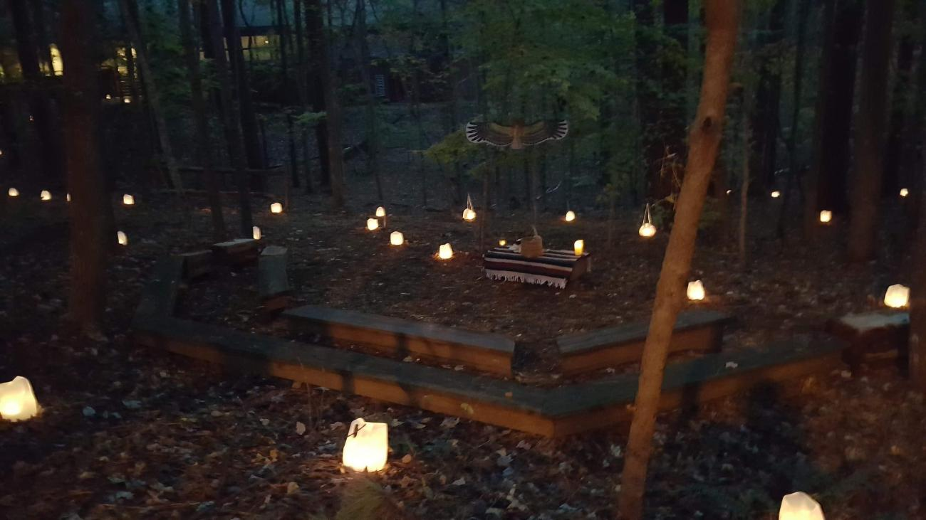 Lighted luminaries through the woods at dusk