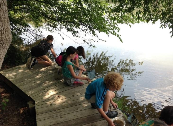 children sit on small wooden boardwalk next to pond and are dipping in the water for bugs