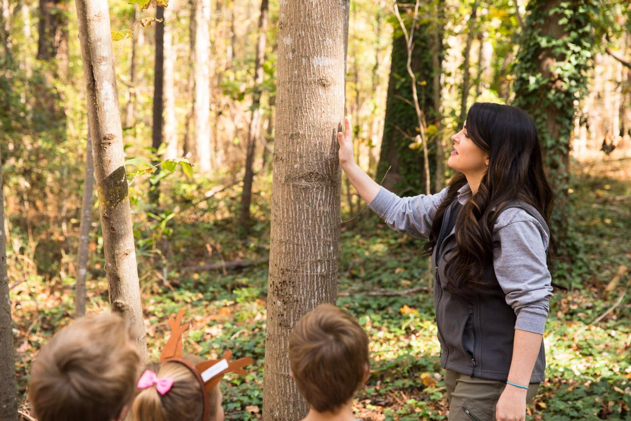 programmer and children observe tree together during nature hike