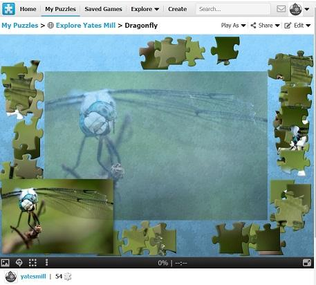 Screenshot of a nature puzzle featuring a dragonfly