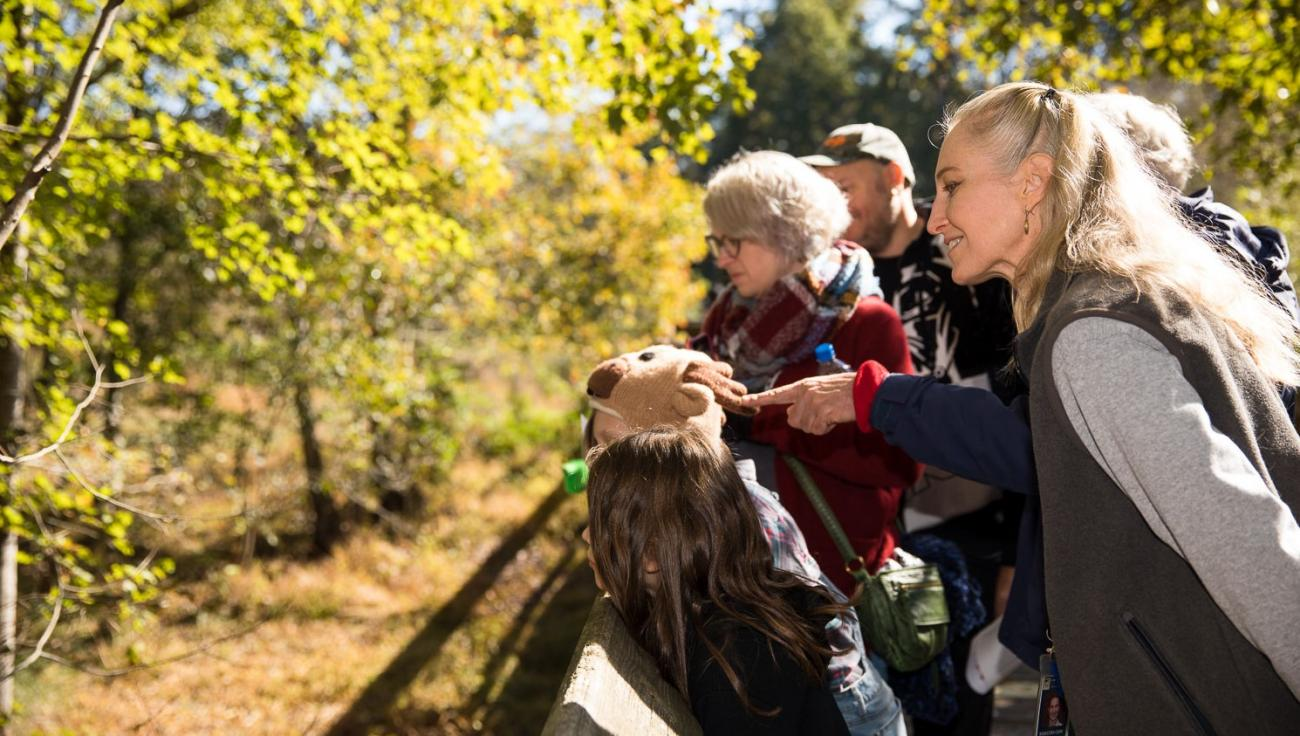 programmer and children observe wetlands and surrounding woods from wooden boardwalk