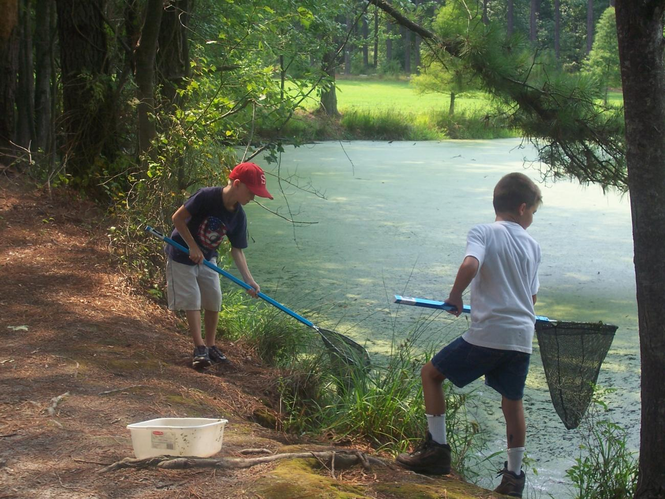 Photo of two boys using nets at one of the park ponds dipping for aquatic critters
