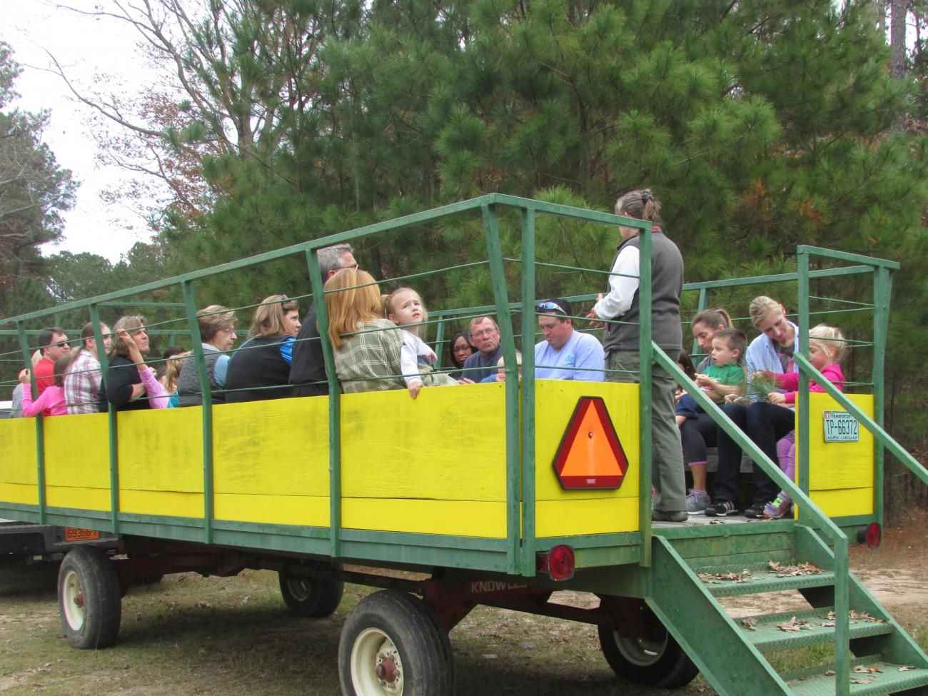 Photo of families on the park's wagon in the Longleaf Area learning about that ecosystem