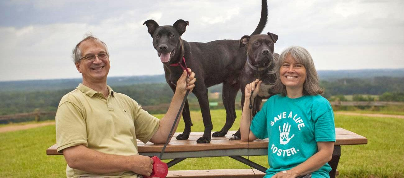 Dog on picnic table with owners sitting there