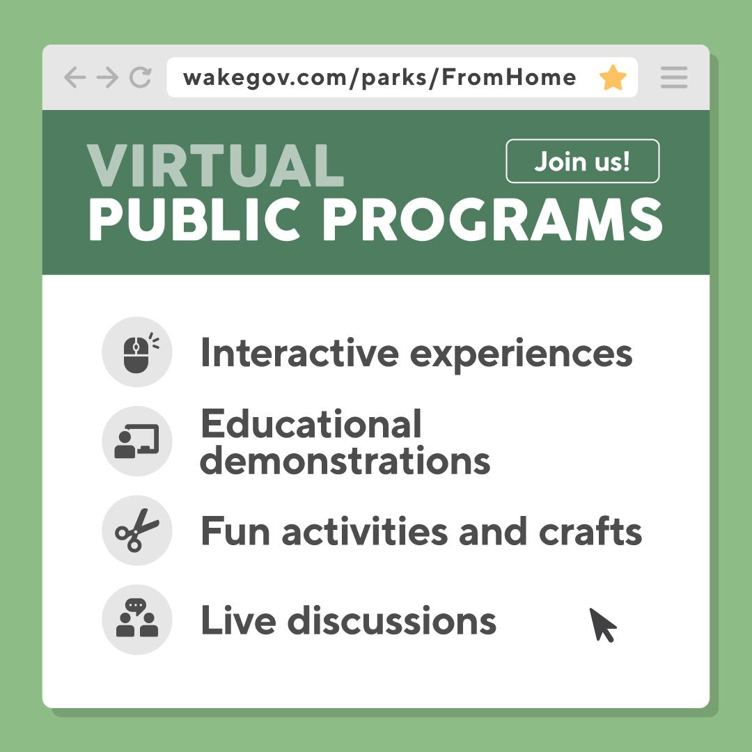 virtual public program opportunities